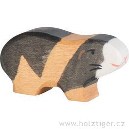 Morče – zvířátko zedřeva